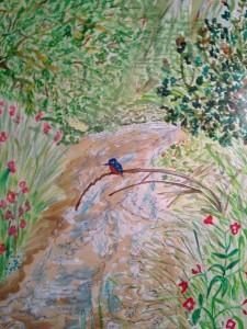 Kingfisher at Kilham